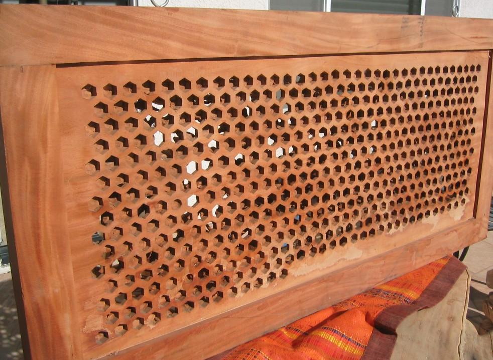 Dragon Panel